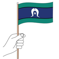 TSI Handheld CLOTH Flag (300mm x 150mm)