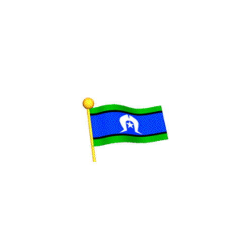 Torres Strait Island Flagpole Flag (Sleeved) (900mm x 450mm) [Size: Small]